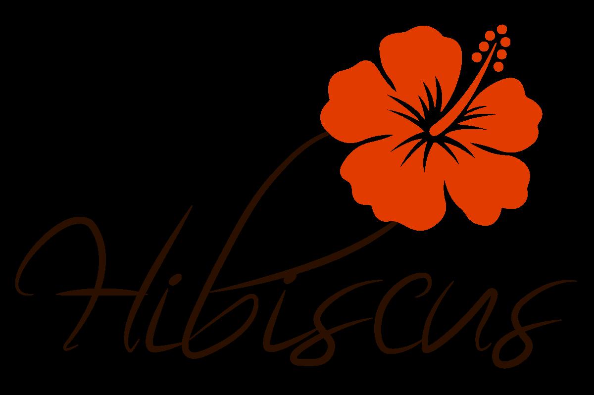 Hôtel HIBISCUS - Profitez en toute simplicité - Mahambo Doany - Analanjirofo - Madagascar